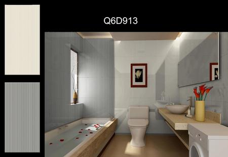 Q6D913-ZS-v539